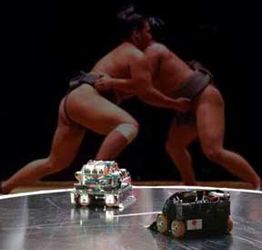 Image of Robot Sumo